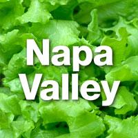 Salad-Napa-200x200